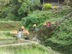 Mardi 27 Décembre 2016 Bontoc Luzon Philippines