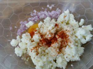 2 - Hacher grossièrement les noix de cajou. Mettre dans un bol l'échalote (ou oignon), rajouter l'oeuf entier, la mozzarella, le paprika, le piment, le sel et poivre. Bien mélanger le tout.