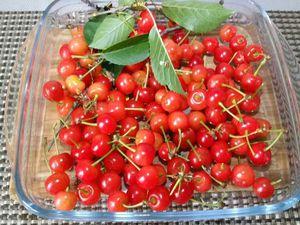 1 - C'est parti pour la cueillette de cerises griottes de Montmorency si vous avez la chance d'avoir un  jardin avec des arbres fruitiers ! En prendre suffisamment pour pouvoir tapisser complètement ensuite le fond de votre moule. Réunir le reste des ingrédients.