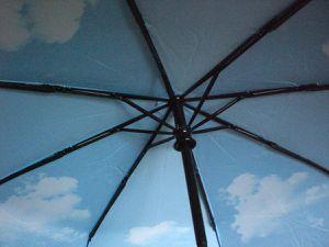 Plemo Regenschirm, Sonnigen Himmel Automatik Taschenschirm (94 cm Durchmesser) im Test...