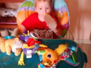 Tom le tricératops et Léo le bourricot.2 jouets Lamaze de Tomy