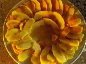 Vite fait, une mangue une pomme, quelques biscuits trempé dans du sirop et du rhum, et une crème au citro amandes.