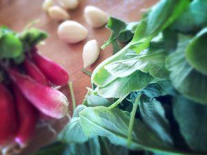 Pesto de fanes de radis