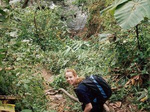 Dschungel kann man in vielen Nationalparks erleben. Z.B. in Khao Yai, nördlich von Bangkok.