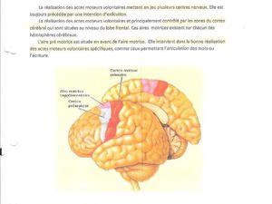 Biologie générale