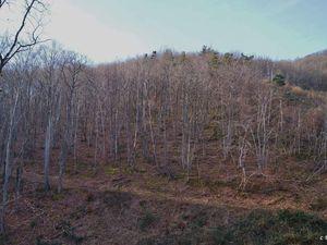 Ardes- sur-Couze dans la vallée - la ruine du château de Mercoeur.