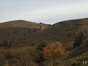 Circuit du puy de Dôme par le chemin des chèvres et des muletiers.