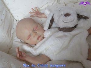 Kit Max de Cindy Musgrove