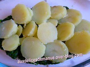 gratin pommes de terre-épinards et tome fraîche