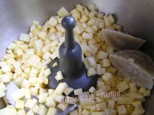 saumon et purée de navets boule d'or et pommes de terre -LIGHT-
