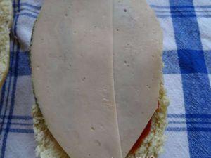 panini 2