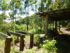 Landes vallonnées, sous-bois et abri précaire pour s'abriter des 31° à 35° à l'ombre !!!