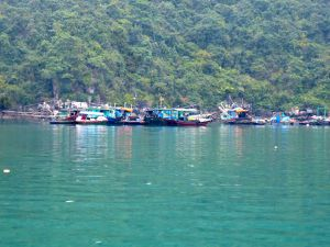 Un petit tour en baie d'Ha Long