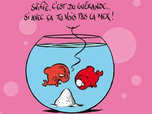 * Avril : des mois et des jours ... 'poisson d'avril&quot&#x3B;