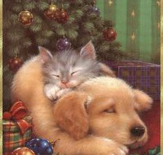 INFOS  dernièrs jours des envois * les Binômes !! * Cartes Noël-Nouvel An *