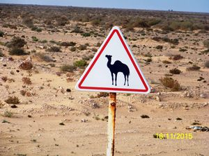 """Pendant toute la descente d'environ 300 km nous voyons du sable, des cailloux et encore du sable. Un drôle de panneau de signalisation nous indique aussi une rencontre probable de chameaux (ici le terme"""" dromadaire"""" n'existe pas). Un grand mur d'enceinte signale ce qui aurait put être l'emplacement privilégié dans grand centre touristique. Le projet est tombé à l'eau mais le mur tient bon !"""