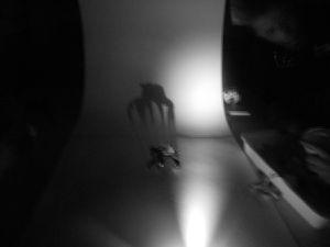 Les ombres monstrueuses photos 6B