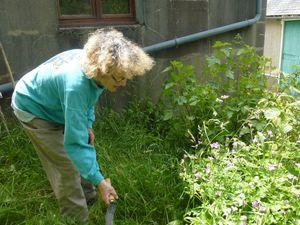 Chaleur et pluie ont favorisé la pousse de l'herbe mais pour le reste ? Il fallait aller voir.