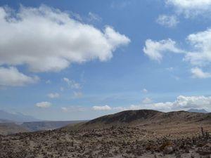 Colca Canyon : milieu et fin