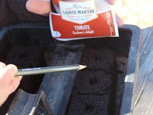 C'est là que mon rôle commence. Avec mes petits doigts de fille, voici venu le moment de semer les graines. Petite astuce pour les graines de tomates qui sont très petites à attraper: humidifier la mine d'un crayon avant de le glisser dans le sachet. Et hop, il ressort avec une graine collée! Reste plus qu'à secouer le crayon pour que la graine vienne se lover dans le trou de la motte. Place maintenant au tamisage pour recouvrir la graine. Reste plus qu'à placer tout ça dans la serre. Bon, là les contenants sont ceux que nous avions sous la main, mais ça prend beaucoup trop de place sous le châssis. Voilà des cagettes en plastique dénichées à droite à gauche qui sont bien plus pratiques. Nous avons recouvert le fond avec du feutre géotextile épais préalablement humidifié. Et comme le plaisir de semer et de voir pousser se partage, c'est toute la famille qui se prête au jeu. Le petits doigts du Prince du Potager du Caillou sèment les graines de potimarron. Un petit coup d'eau au pulvérisateur pour ne pas agresser les graines. Y'a plus qu'à attendre!