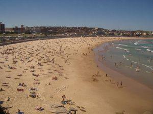 Backpacker Australia : le livre indispensable pour bien préparer votre année en Australie