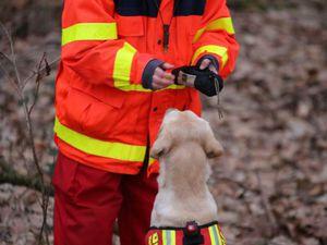 Die Labradorhündin Wilma agiert dagegen als Verbellerin, das heißt sie bellte an der gefundenen Person so lange, bis der Hundeführer bei ihr eintraf.