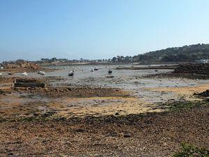 6 - Un petit tour en Bretagne : derniers jours dans le nord