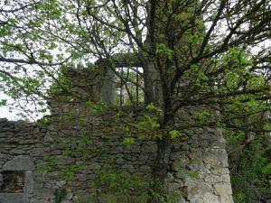 On remonte par un petit sentier, qui prend quelques mètres plus bas et mène aux ruines du Chaffal