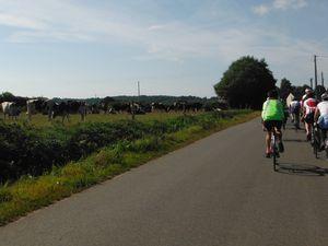Avant Collinée &#x3B; commune du Gouray &#x3B; du côté de Gomené &#x3B; au Breil Tual en Plémet.
