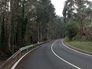 """120 marches """" impossible """" petit détour par la route ,dans les forêts d'eucalyptus (catastrophe écologique pour l'Espagne) nous sommes en Cantabrie . la cote est belle."""