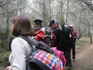 DIMANCHE 5 MARS 2017 - LE CAMP DE CESAR (Gard)
