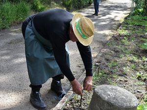 &quot&#x3B; Je triangule &quot&#x3B; explique Roger Rose aux visiteurs des jardins de Melgven à Penhars