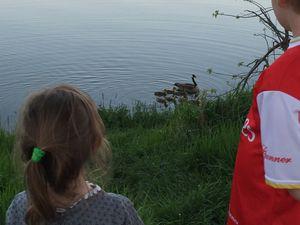 soiree famille - le lac