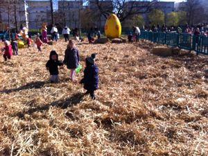 La chasse aux oeufs de Pâques 2015 !