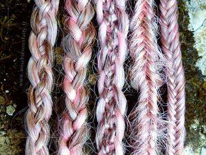 La torsade de dreads et les différentes tresses (cliquez pour agrandir)