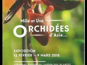 Exposition d'orchidées au Jardin des Plantes