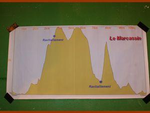 Course du Sanglier à Cerny 2015.