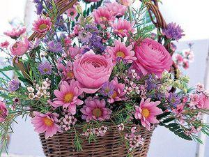 Quelques fleurs pour ce dimanche