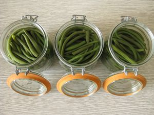 ARRIVAGE d'haricots verts !!!
