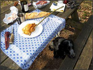 C'est l'heure du repas, moment très intéressant pour tout le monde.