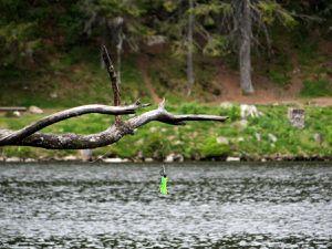 Lac Vert à 1053m d'altitude