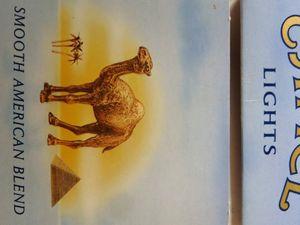 """Dessin de """"Camel"""", le chameau des cigarettes, Cl. Elisabeth Poulain"""