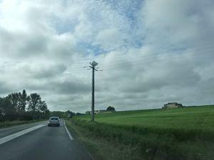 Beauté de la France n°2 , Vers Loudun, les paysages de coteau, ferme et arbres, Cl. Elisabeth Poulain