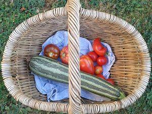 Savourer la production 2016 du jardin (une année à tomates et une année sans pour les fraises)