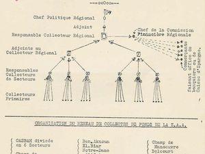 L'armée Brésilienne méne dans la favela de la Rocinha la méme bataille que l'armée Française dans la Casbah .