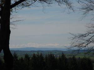 Pyrénées vus depuis Montfranc