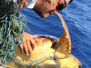 Une tortue emmêlée dans un bout de filet de pêche à la dérive est repérée. Marco, notre skipper, aura toutes les peines du monde à la sortir de l'eau : une tortue, c'est dense ! Il coupe le filet et relâche l'animal. Ouf !
