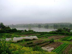 Les terrains agricoles du Mesnil inondés