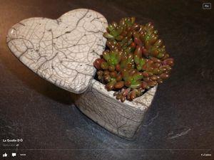 Paimpol : l'art du Raku à l'atelier de poterie du Terron chez Amandine Chelon
