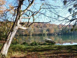 Boucle depuis Bois-le-Roi, via les bords de Seine et Samois